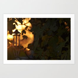 Torch and Fig Leaves at Dusk Art Print