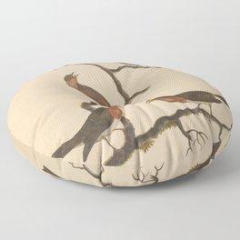 Redstart Red Breast Floor Pillow