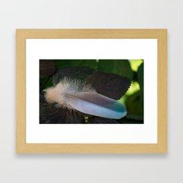 Feather Fantasy Framed Art Print