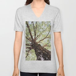 Old Birch in Spring Unisex V-Neck