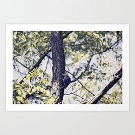 Little Tree Hugger Art Print