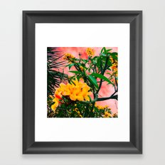 Plumeria in Storm Framed Art Print