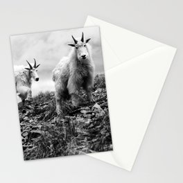 MOUNTAIN GOATS // 1 Stationery Cards