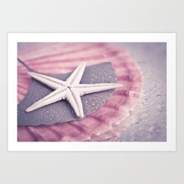 MARITIME STILL LIFE with sea shell and starfish Art Print