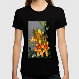Orange Day Lilies & Buds  Flower Garden T-shirt