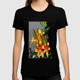 Orange Day Lilies & Buds  Flower Garden T-shirt