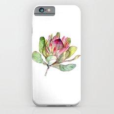 Protea Flower iPhone 6s Slim Case