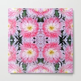 Rose Pink White Flower Blossoms Dahlias Metal Print