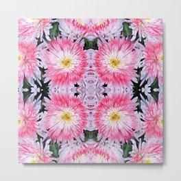 Rose Pink White Flower Blossoms Dahlias Metal Print