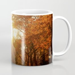 Flatiron Building Sunset - New York City Coffee Mug