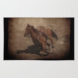 Break Away Rodeo Horse Rug