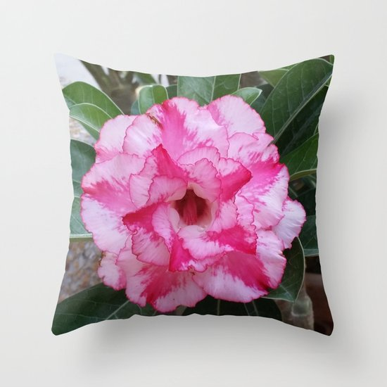 OH! SO SWEET... Throw Pillow