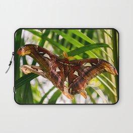 Atlas Moth Laptop Sleeve