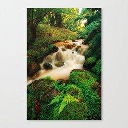 Parque Terra Nostra Canvas Print