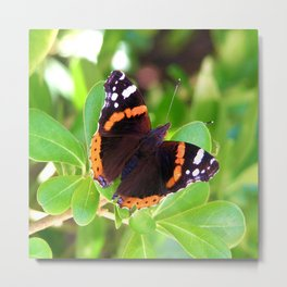Society6 butterfly Metal Print