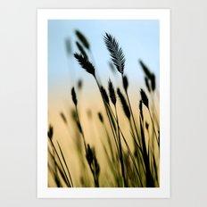 Cascade Grass Art Print