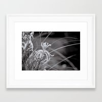 knight Framed Art Prints featuring Knight by Reimerpics