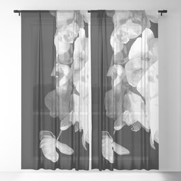 White Orchids Black Background Sheer Curtain