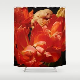 Parrot Tulips bouquet Close up IX Shower Curtain