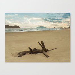 DRYING IN THE SEA Canvas Print