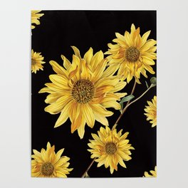 Sunflower Pattern 2 Poster