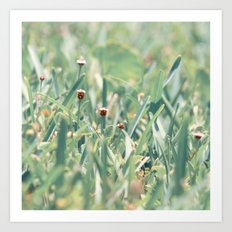 The Grasshoppers Perspective Art Print