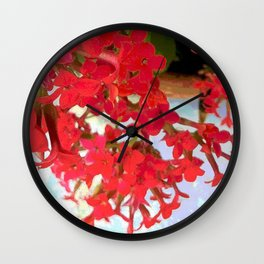 Red Kalanchoe Flowers Wall Clock