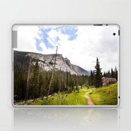 Into The Mountains Laptop & iPad Skin