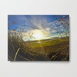 Icelandic Sunset from the Grass Roof of a Turf Farmhouse (1) Metal Print