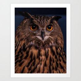 The Owl Art Print