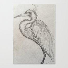 Bird drawing Canvas Print