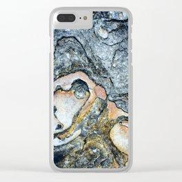 Florida Sandstone Pattern #1 Clear iPhone Case