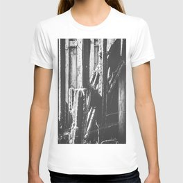 cactus with wooden fence background in black and white T-shirt
