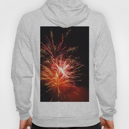 sparky night Hoody