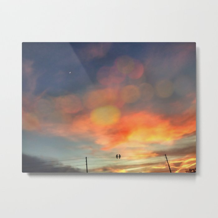Love birds in the sunset Metal Print
