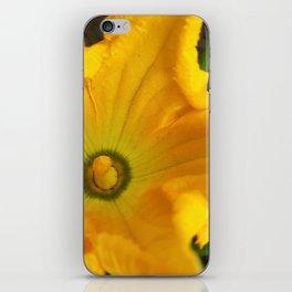 Pumpkin flower iPhone Skin