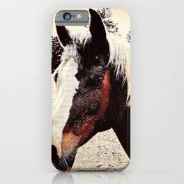 Portrait Of A Gentle Friend iPhone Case