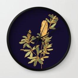 Banksia on Indigo Blue Botanical Illustration Wall Clock