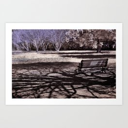 Park Bench in the Shadows Art Print