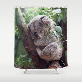Amazingly Gorgeous Little Koala Bear Resting On Tree Branch Ultra High Resolution Shower Curtain