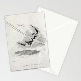 026 Tropic Bird phaeton aethereus Stationery Cards