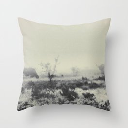 Time, The Endless Wave Throw Pillow