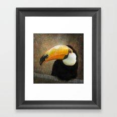 It's all about the Beak Framed Art Print