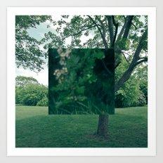 Fokus Objekt Abstand n°4 Art Print