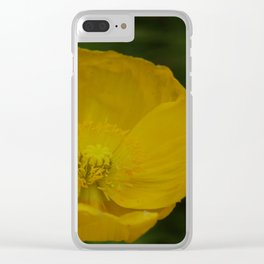 Yellow Poppy Clear iPhone Case