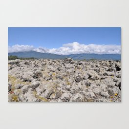 The Nisga'a Lava Beds of Northern British Columbia Canvas Print