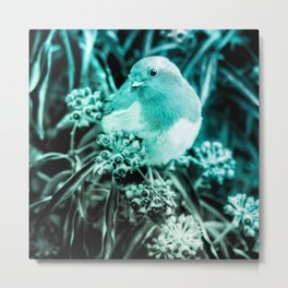 european robin turquoise tinted aesthetic bird art altered photography Metal Print