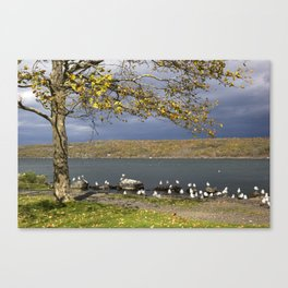 Autumn Day in the Finger Lakes II Canvas Print