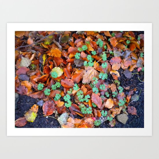 Clovers in Fall Art Print