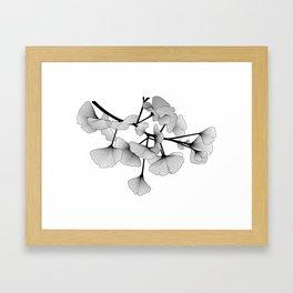 Gingko Lines Framed Art Print